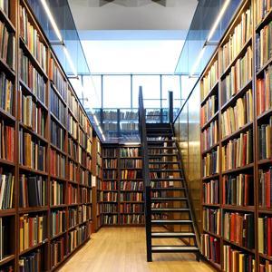 Библиотеки Ряжска